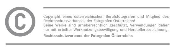 Copyright_Signet_Grau