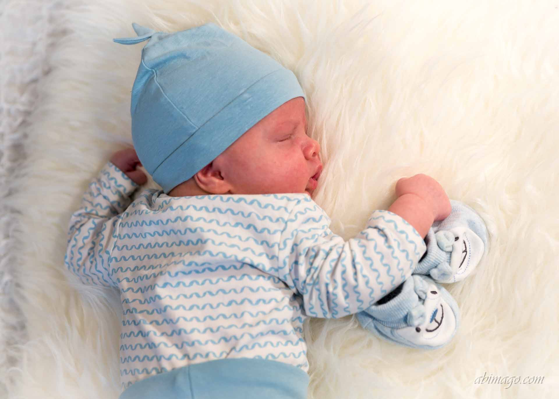 Newborn Fotografie - Babybauch Fotografie 16
